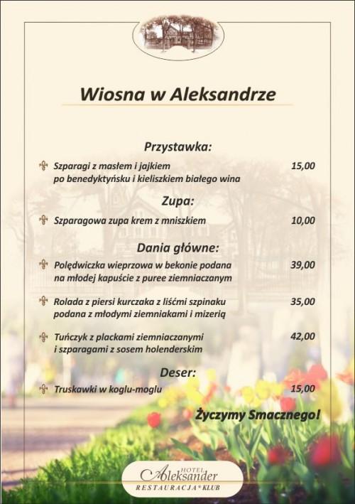 Hotel Aleksander Włocławek restauracja obiad
